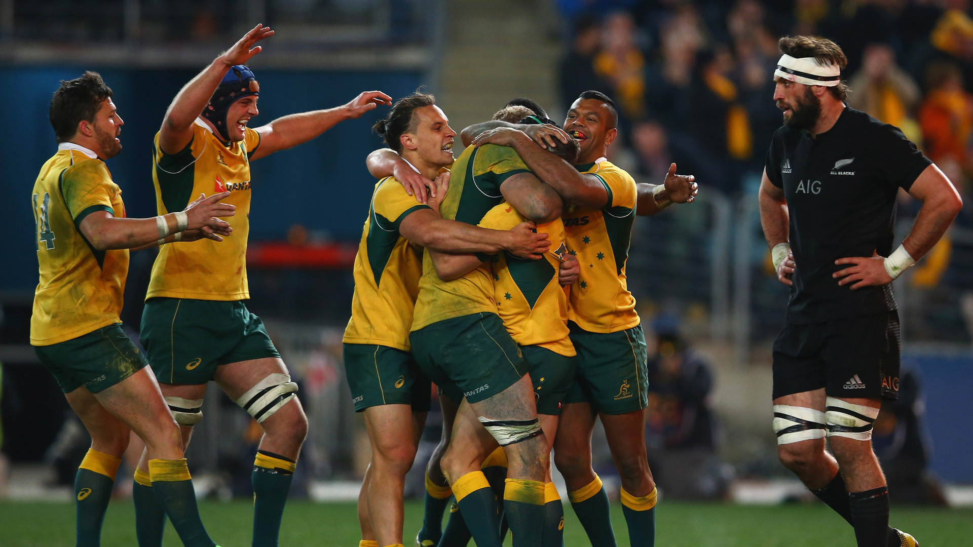 Australia V New Zealand The Rugby Championship The Australian Rugby Business Network